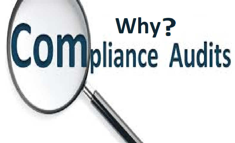 Reason-to-Prepare-for-Compliance-and-IT-Audits